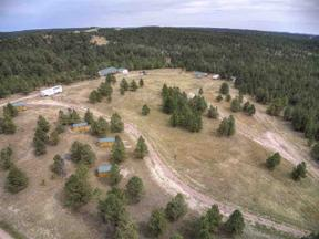 Property for sale at 11863 W Argyle Road, Custer,  South Dakota 57730