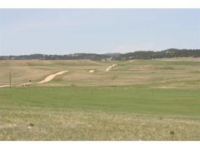 Property for sale at 0 Dry Creek Rd, Hermosa,  South Dakota 57744