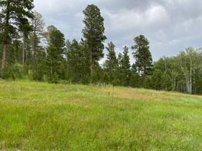 Property for sale at Tbd Rose Place, Deadwood,  South Dakota 57732