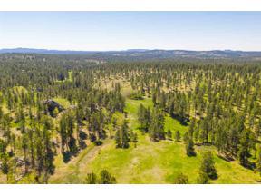 Property for sale at Tbd Custer Limestone Road, Custer,  South Dakota 57730