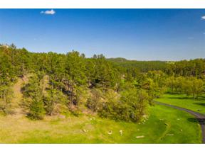 Property for sale at 13286 Three Meadows Road, Hermosa,  South Dakota 57744