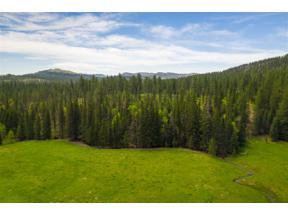 Property for sale at Tbd Castle Creek Road, Hill City,  South Dakota 57745
