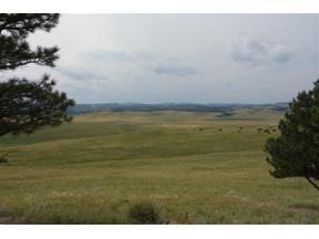 Property for sale at Rr Cobb Road, Hermosa,  South Dakota 57744