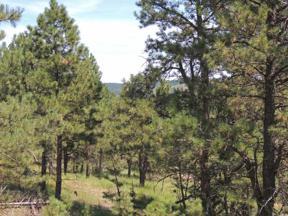 Property for sale at Lot 2 Chokecherry Ridge Road, Hermosa,  South Dakota 57744
