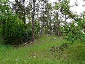Property for sale at 13737 Latigo Road, Hermosa,  South Dakota 57744