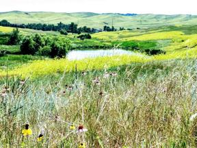 Property for sale at 10704 Hay Creek Road, Belle Fourche,  South Dakota 57717