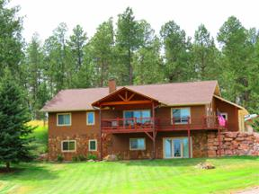 Property for sale at 25007 Chandler Drive, Custer,  South Dakota 57730