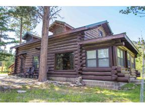 Property for sale at 24415 Highway 87, Hill City,  South Dakota 57745
