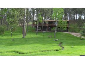 Property for sale at 12735 N Prairie Creek Road, Hill City,  South Dakota 57745