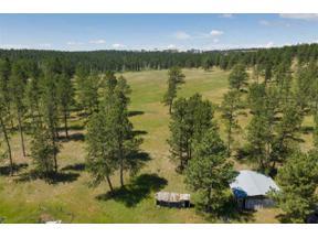 Property for sale at 11390 Pass Creek Road, Custer,  South Dakota 57730