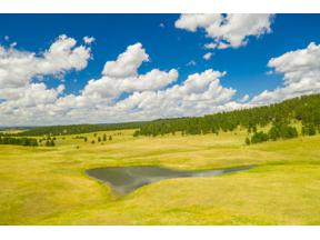 Property for sale at 11803 W Argyle Road, Custer,  South Dakota 57730