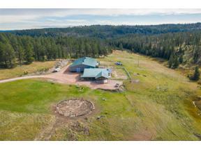 Property for sale at 11061 S Castle Creek Road, Hill City,  South Dakota 57745