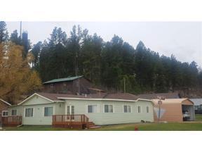Property for sale at 321 Pine Street, Hill City,  South Dakota 57745
