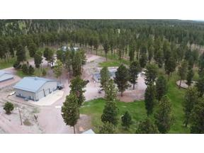 Property for sale at 23607 & 23619 Tigerville Road, Hill City,  South Dakota 57745
