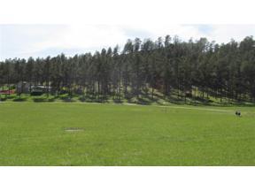 Property for sale at 23533 Wheel Inn Trail, Hill City,  South Dakota 57745