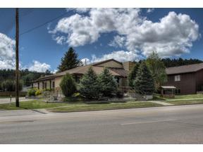 Property for sale at 141 N 5th Street, Custer,  South Dakota 57730