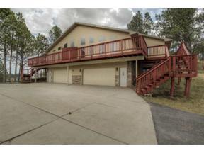 Property for sale at 1008 Sherman Street, Custer,  South Dakota 57730