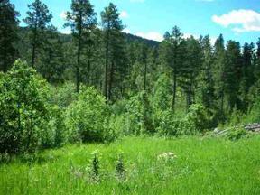 Property for sale at Buena Vista Highway 14A, Deadwood,  South Dakota 57732