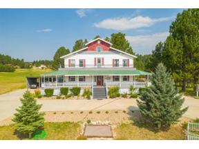 Property for sale at 12046 Highway 16, Custer,  South Dakota 57730
