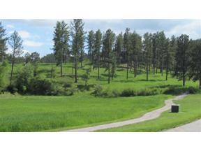 Property for sale at 841 Major Lake Drive, Hill City,  South Dakota 57745