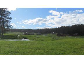 Property for sale at 501 Major Lake Drive, Hill City,  South Dakota 57745