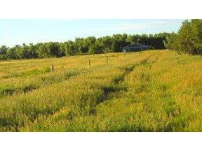 Property for sale at Tbd 137th Ave., Vale,  South Dakota 57788
