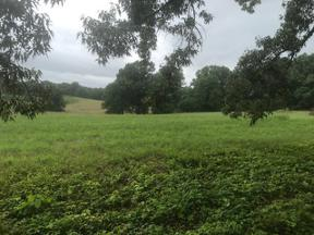 Property for sale at Spring Hill,  Tennessee 37174