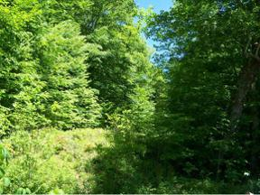 Property for sale at Lot 3 Fred Wallace Road, Trade,  TN 37691