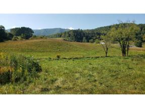 Property for sale at TBD Pine Orchard Rd, Butler,  Tennessee 37640