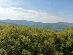 Property for sale at 0 Dameron Ridge Road, Unicoi,  Tennessee 37601