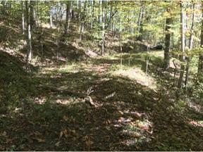 Property for sale at TBD Mining Town, Mountain City,  Tennessee 37683