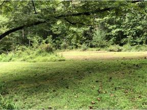 Property for sale at 00 Howes Lane, Butler,  Tennessee 37640