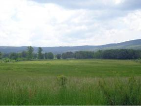 Property for sale at TBD Hwy 421 N, Shady Valley,  TN 37688