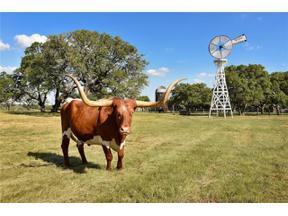 Property for sale at 236  Doss Spring Creek Rd, Fredericksburg,  Texas 78624