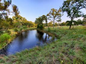 Property for sale at 399  Leisure Ln, Cedar Creek,  Texas 78612
