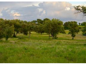 Property for sale at 207  Hidden Hills Cv, Spicewood,  Texas 78669