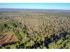 Property for sale at 000 FM 942, Out of State,  Texas 77351