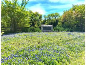 Property for sale at 1401  Palomino Ridge Dr, Austin,  Texas 78733