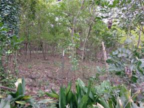 Property for sale at 1209  Azie Morton Rd, Austin,  Texas 78704