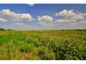 Property for sale at 10275  Rodriguez Rd, Austin,  Texas 78747