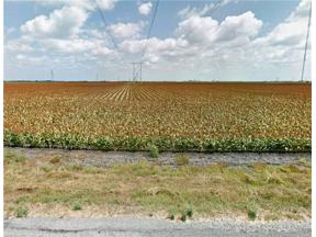 Property for sale at 0000 County Road 34, Robstown,  Texas 78380