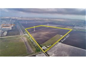 Property for sale at 4642 County Road 3667, Taft,  Texas 78390