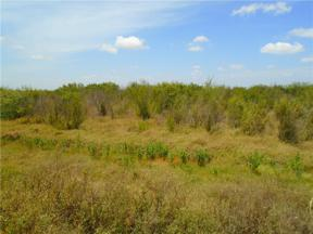 Property for sale at 0000 Cr Road 45 & State Hwy 286, Corpus Christi,  Texas 78347
