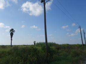 Property for sale at 0 County Road 33(On Oso Creek), Corpus Christi,  Texas 78415
