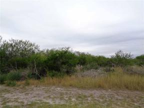 Property for sale at 0 County Road 3034, Orange Grove,  Texas 78372