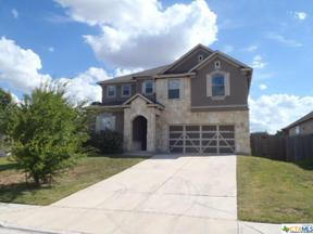 Property for sale at 224 Connor Elkins Drive, Kyle,  Texas 78640