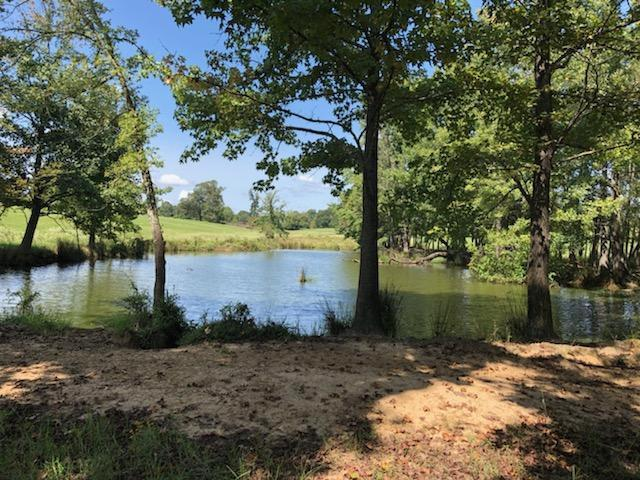 Photo of home for sale at TBD CR 3522, Leesburg TX