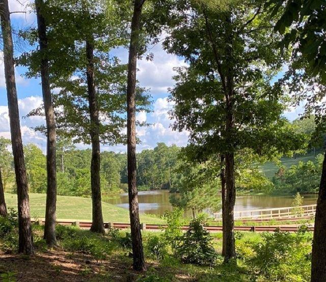 Photo of home for sale at TBD MAGNOLIA LANE, Gladewater TX