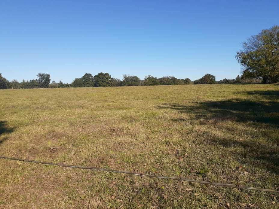 Photo of home for sale at 0000 FM 1519, Pittsburg TX