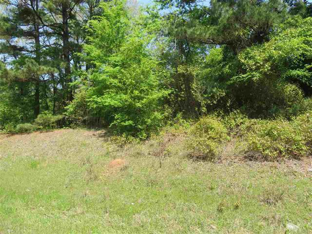 Photo of home for sale at TBD FM 449, Longview TX